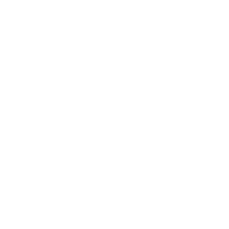 Google adwords Icon