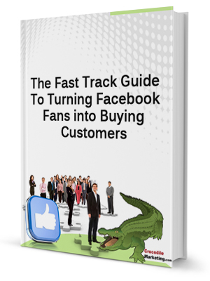 free resource for Guide To Turning Facebook Fans into Buying Customers