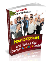 ebook cover for Reduce the Cost of Google Adwords